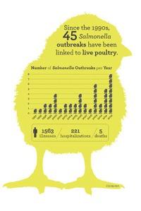 salmonella-chick-graph-white2